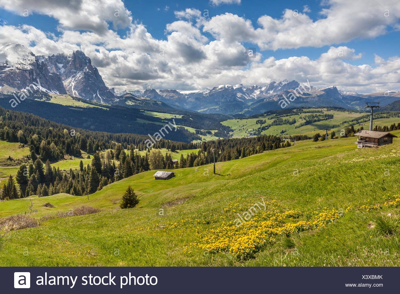geography / travel, Italy, South Tyrol, Alm on the Seiser mountain pasture, Additional-Rights-Clearance-Info-Not-Available - Stock Image