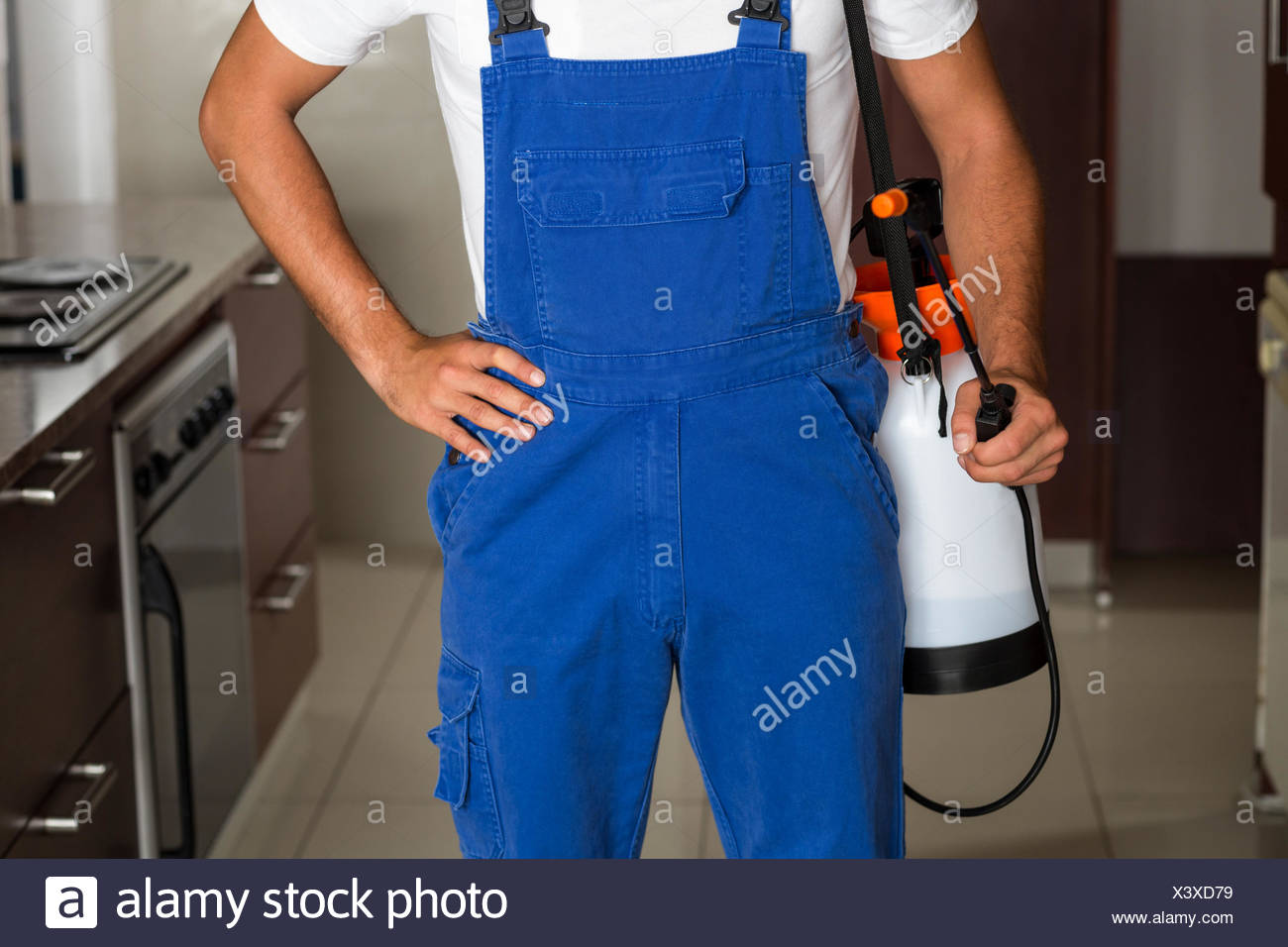 Midsection of pest worker with sprayer - Stock Image