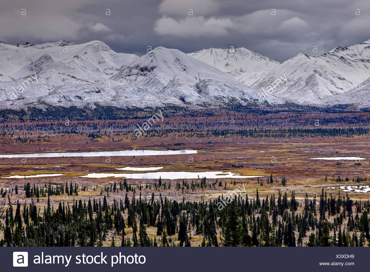 North America, the USA, Alaska, the central south, Chugach Mountains, - Stock Image