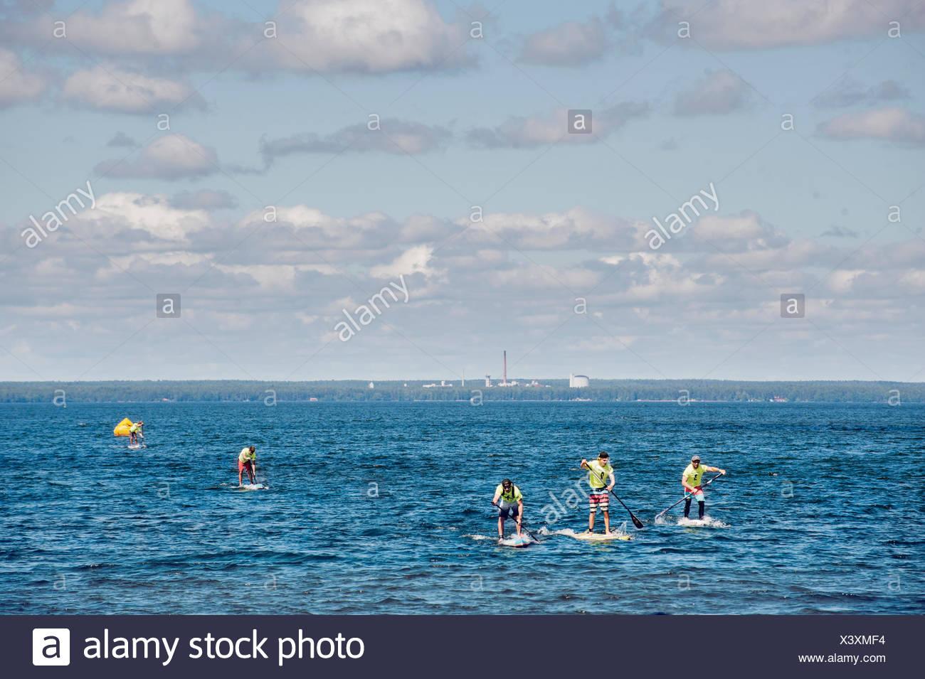 Finland, Varsinais-Suomi, Eura, Lake Pyhajarvi, Young men paddleboarding on lake - Stock Image