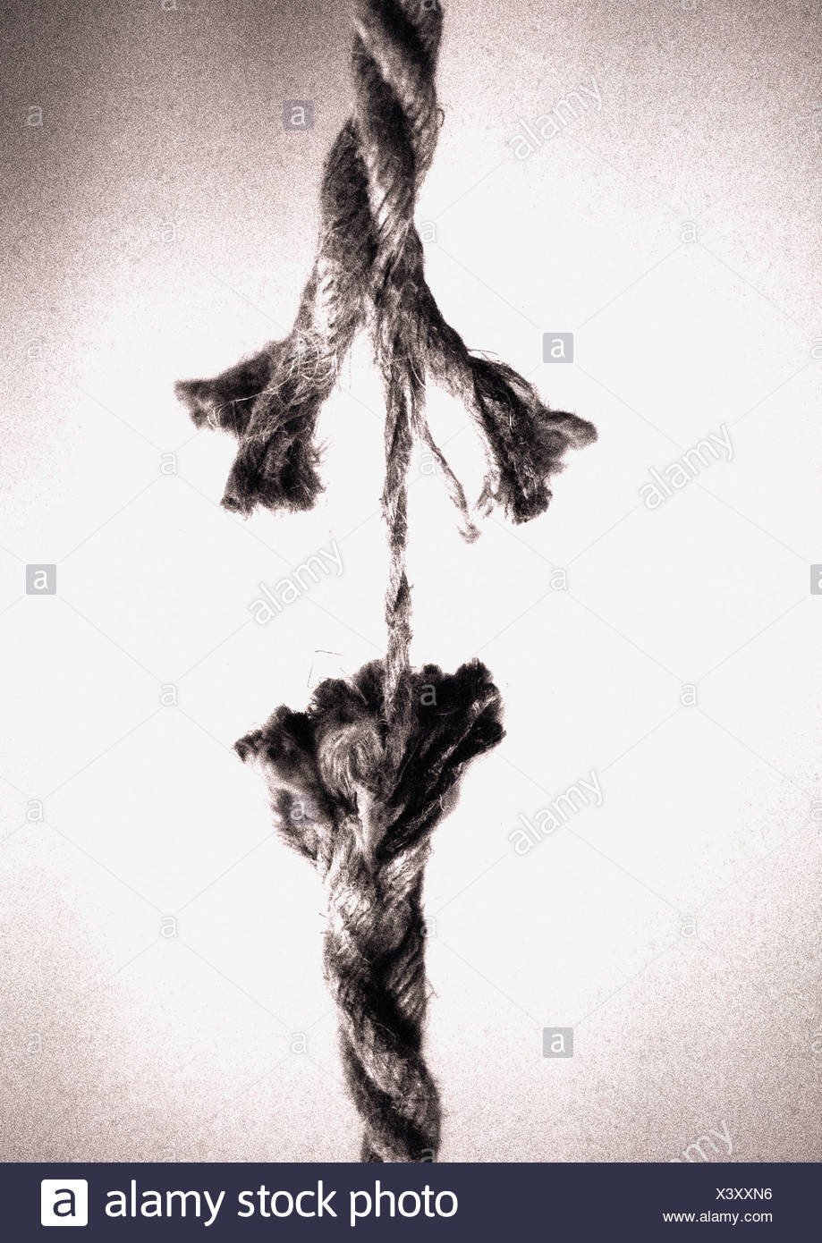 Frayed rope about to break - Stock Image