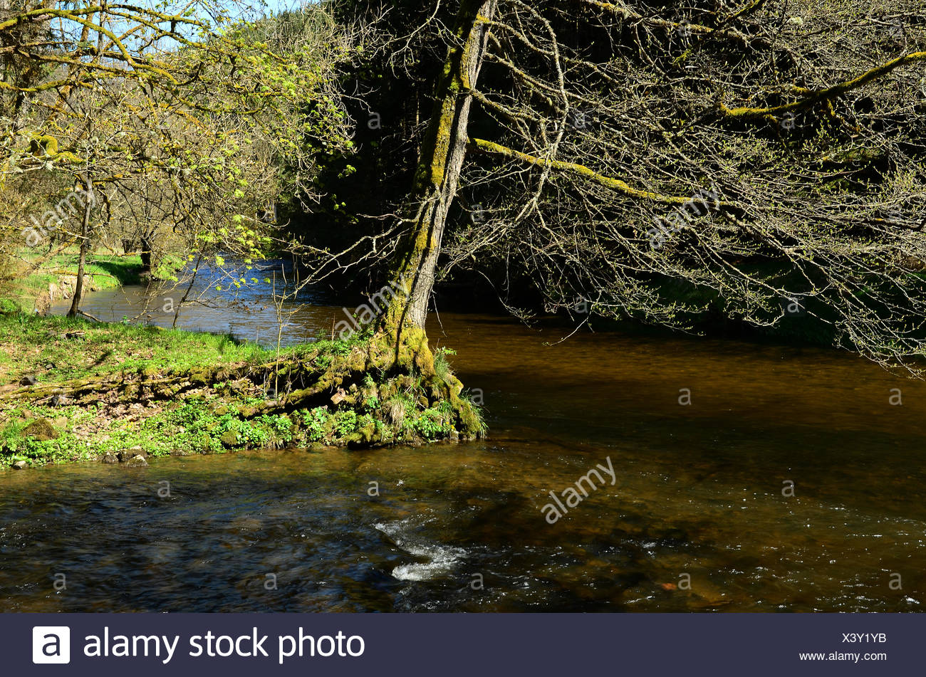 Black Forest, Germany, River Wutach, canyon - Stock Image