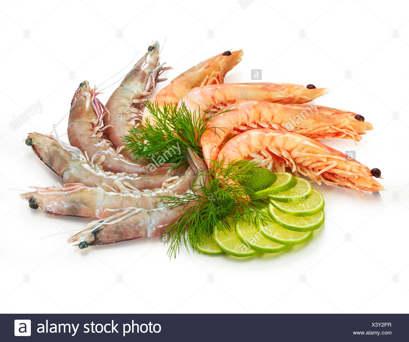Boiled and raw prawns, lime slices (Citrus aurantifolia) and dill (Anethum graveolens), white background - Stock Image