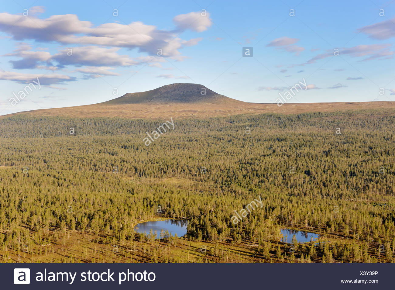color image Dalarna forest horizontal landscape mountain nature Scandinavia Scandinavian mountain summer Sweden - Stock Image