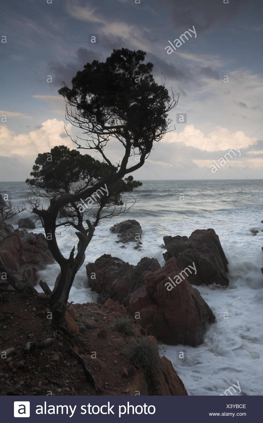 Sardinien, Sardinia, Italien, Italy, Italia Stock Photo