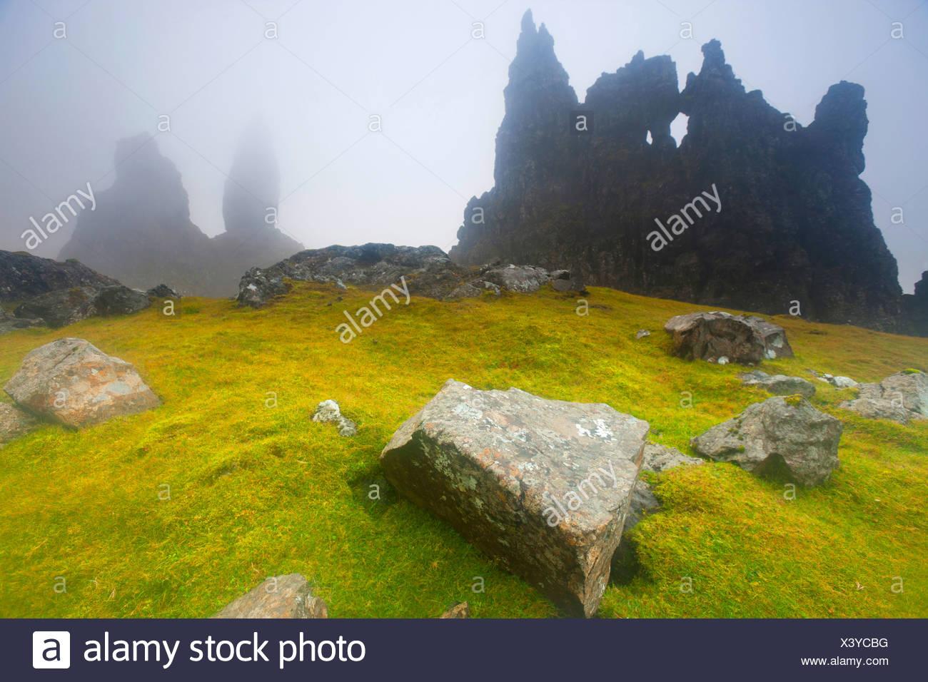 Old Man of Storr, Old Man, Storr, Great Britain, Europe, Scotland, island, isle, Skye, meadow, rock, cliff, erosion, fog - Stock Image