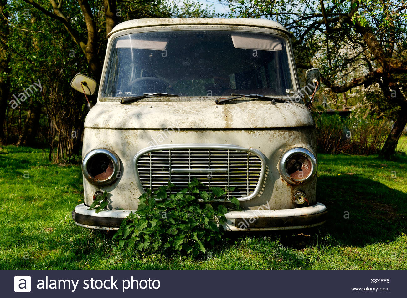 Old minibus from the DDR in a garden, Roegnitz, Mecklenburg-Western Pomerania, Germany, Europe - Stock Image