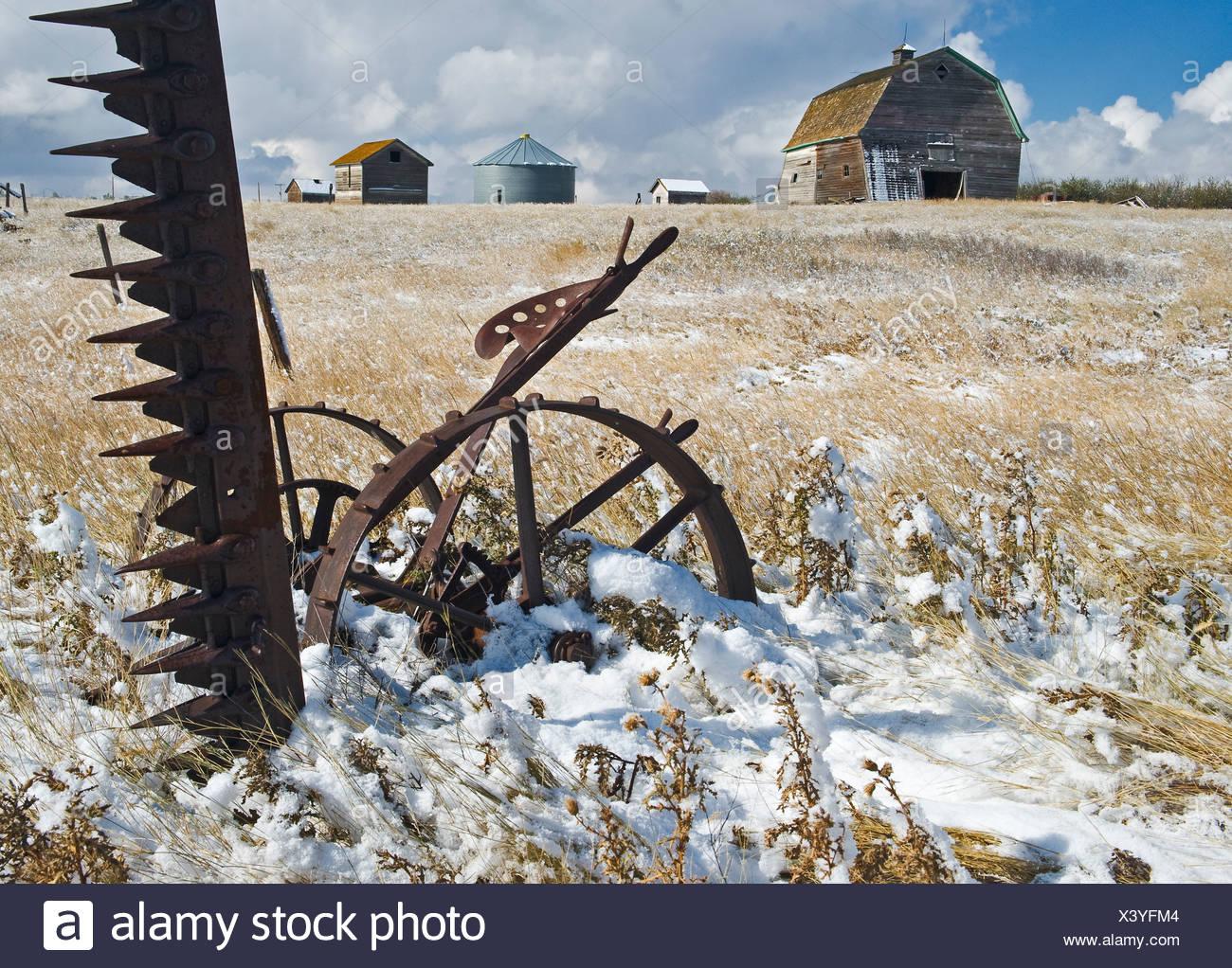 Sickle Farming Stock Photos & Sickle Farming Stock Images
