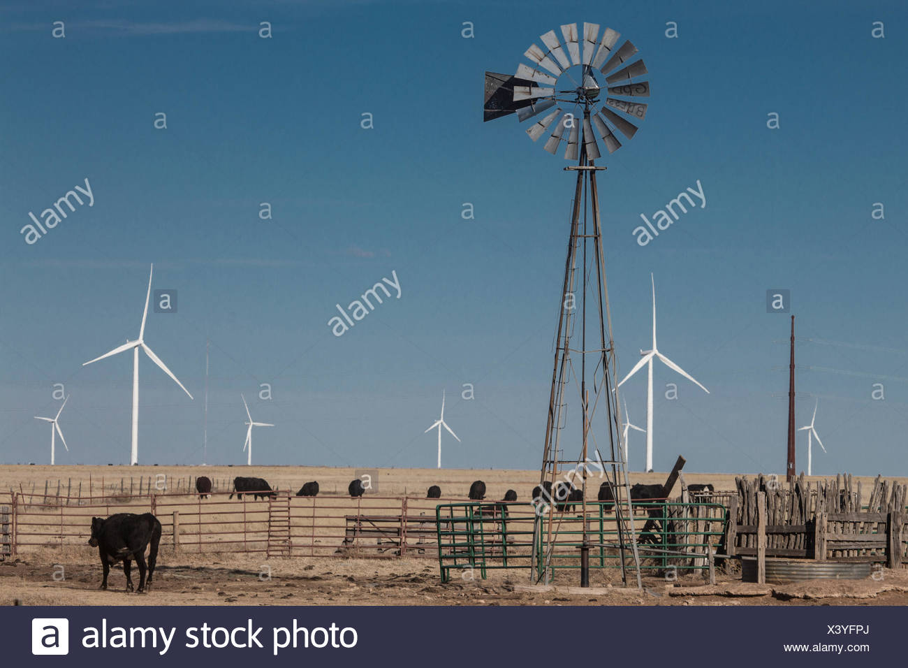 An old style windmill draws water for cattle and horses, as wind generators in background create electricity. - Stock Image