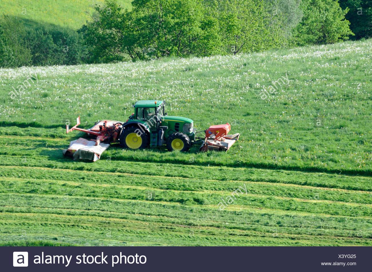 Gemeinsame traktor, schlepper, mähwerk, Gemähte Wiese, landwirtschaft, wiese #XD_48