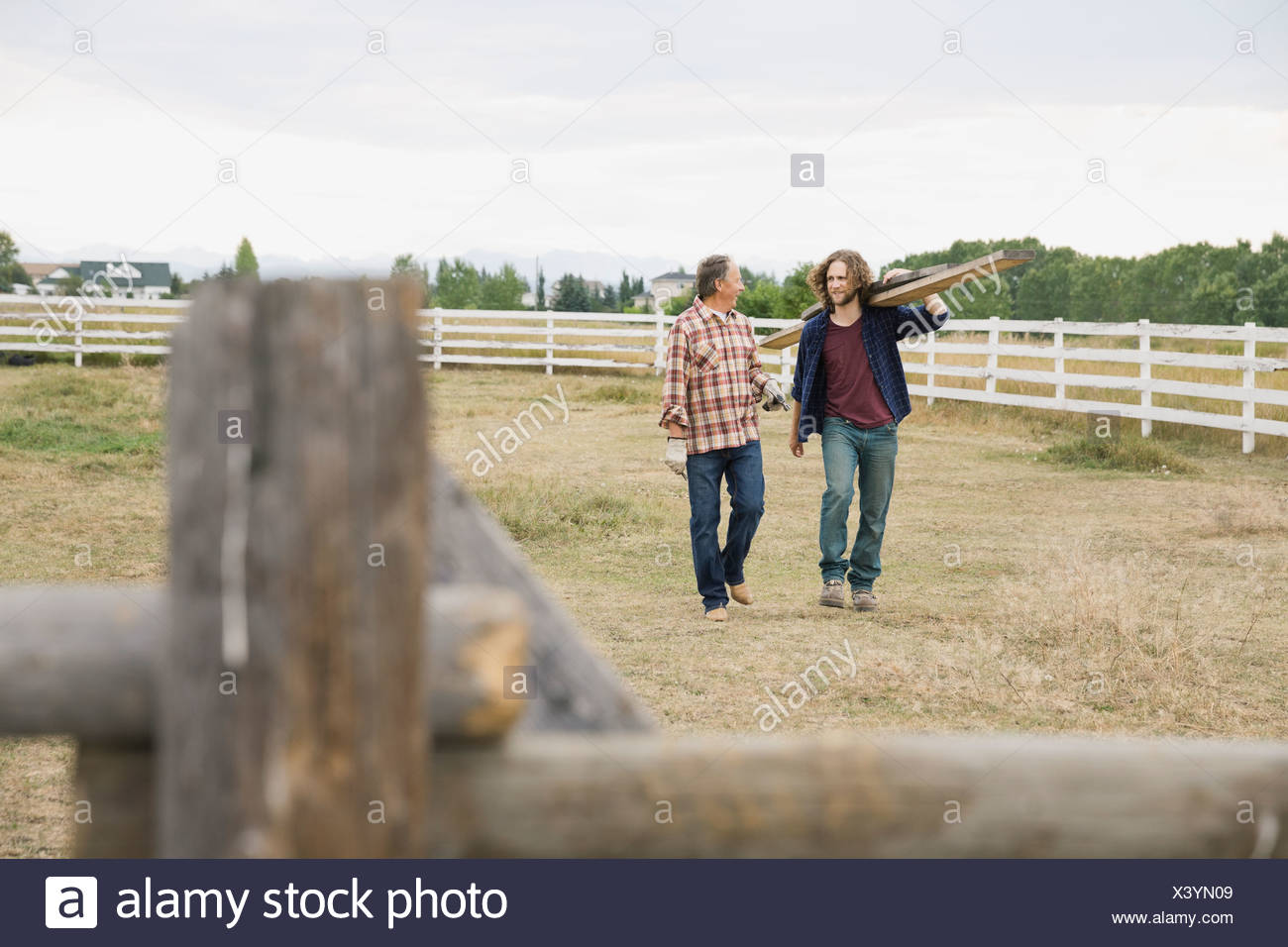 Father and son fixing fence planks on farm - Stock Image