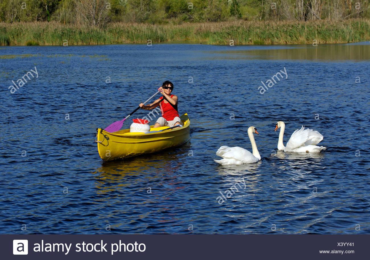 canoe in Quinson lake in Verdon natural park, France, Provence, Verdon - Stock Image