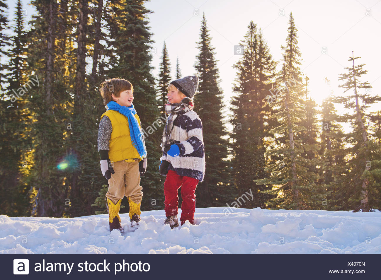 Two young boys laughing in the snow, trees in the background - Stock Image