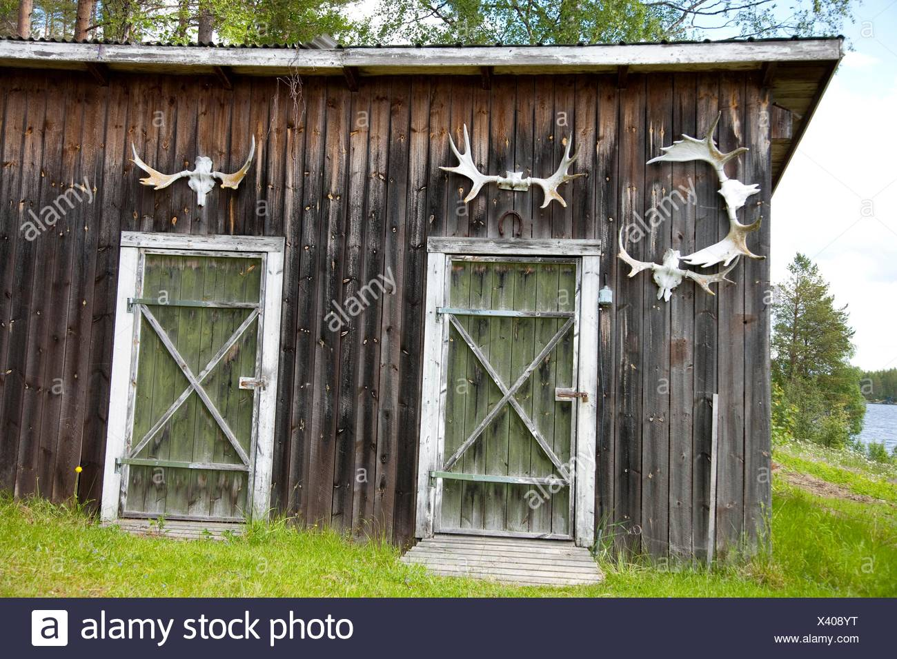 Moose antlers on old house, countryside of northern Sweden Stock
