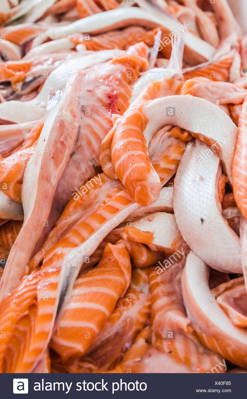 Salmon bellies close-up - Stock Image