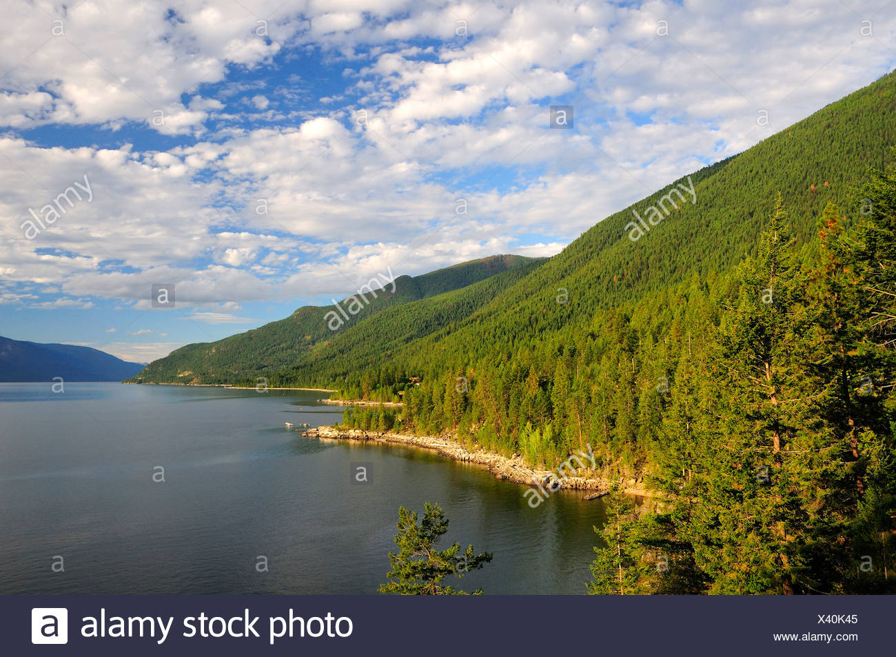 Canada Kootenay Lake near Crawford Bay British Columbia Rocky mountains Rockies nature landscape scenery forest - Stock Image