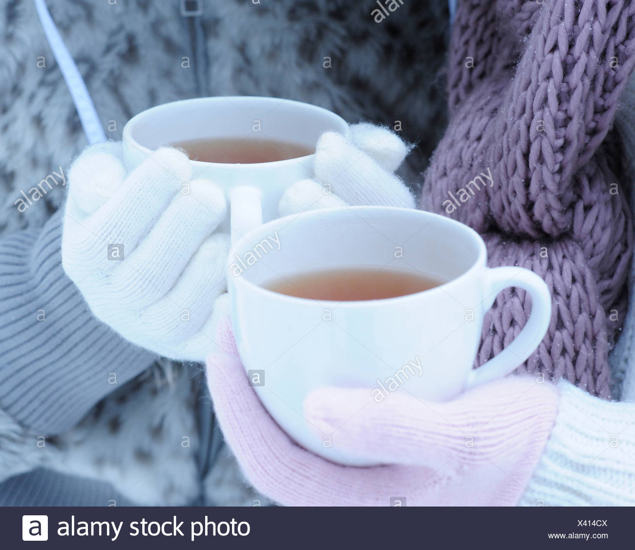 Close-up of two young women holding hot tea on winter day - Stock Image
