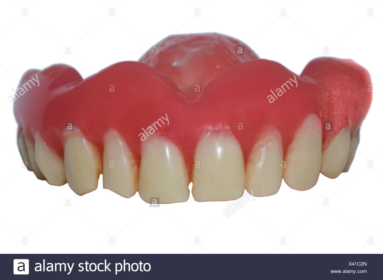 Close-up of a denture over white background - Stock Image