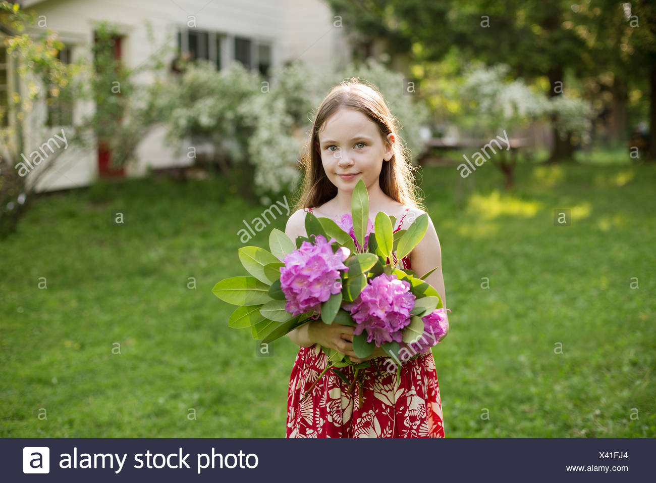 A young girl holding a bunch of purple hydrangea flowerheads. - Stock Image