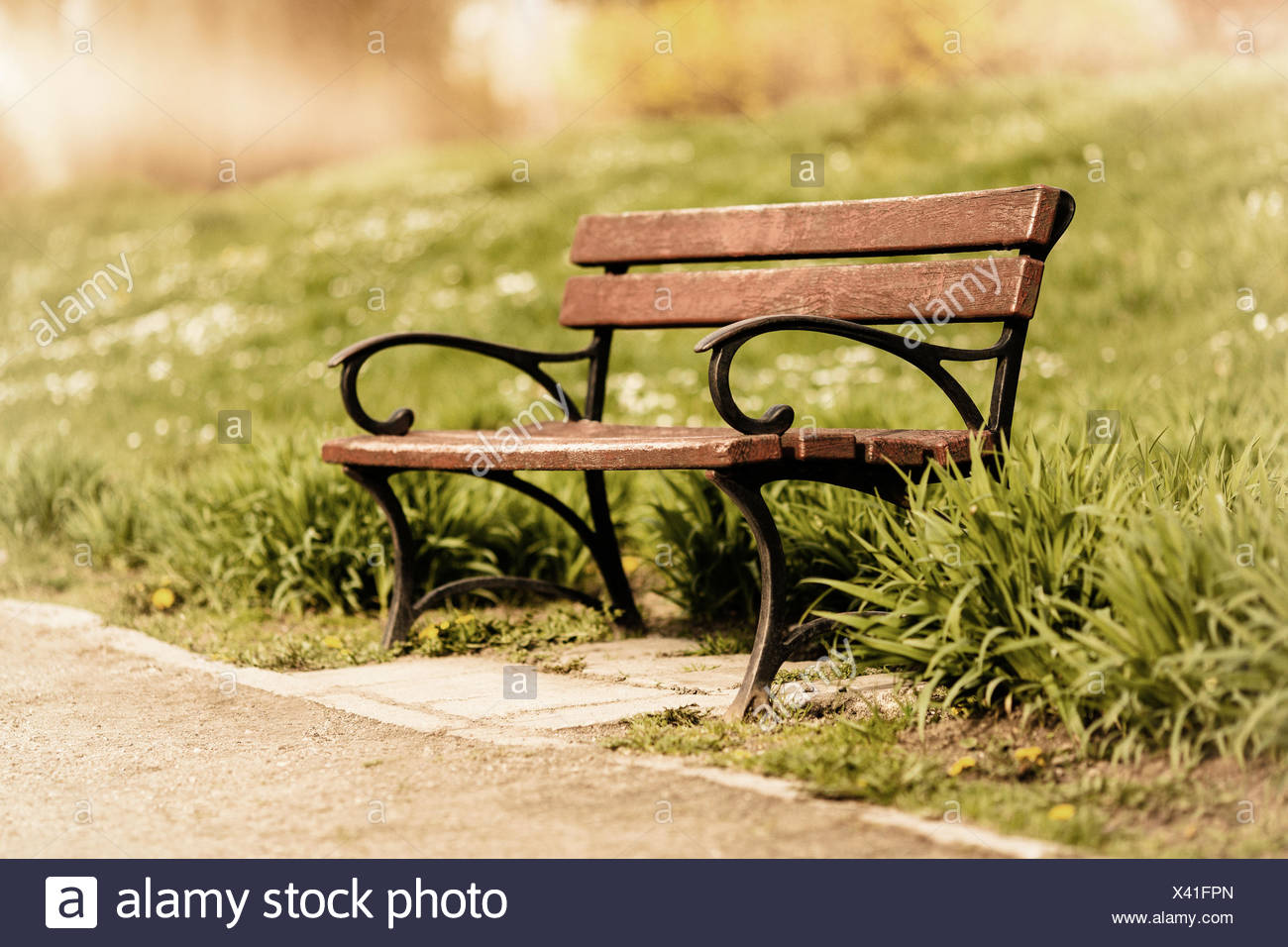 Park bench on a sunny day - Stock Image