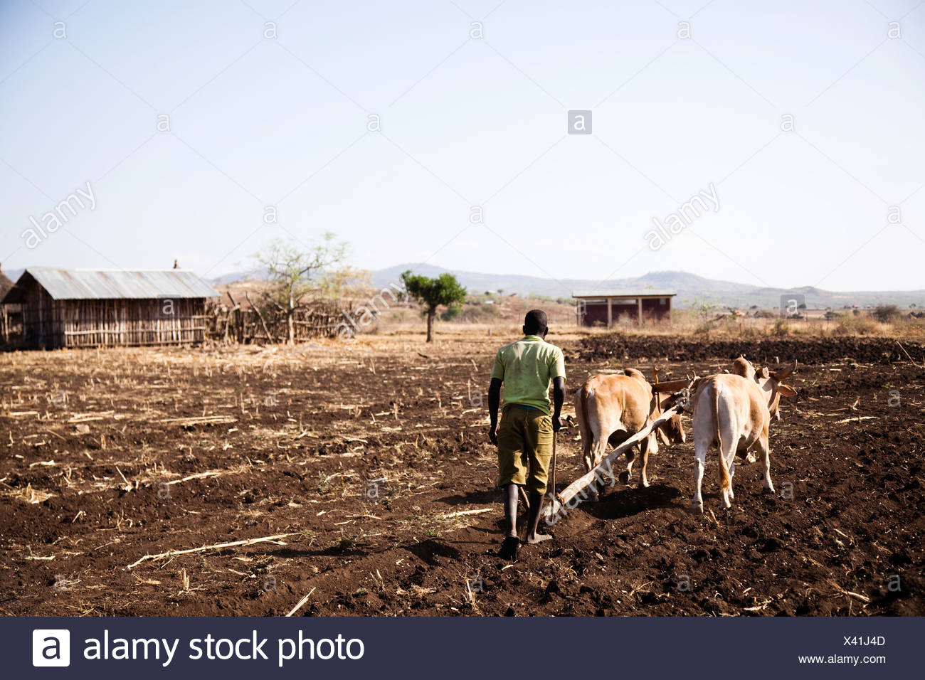 Local farmers work in the field in the remote Omo valley, Ethiopia. - Stock Image