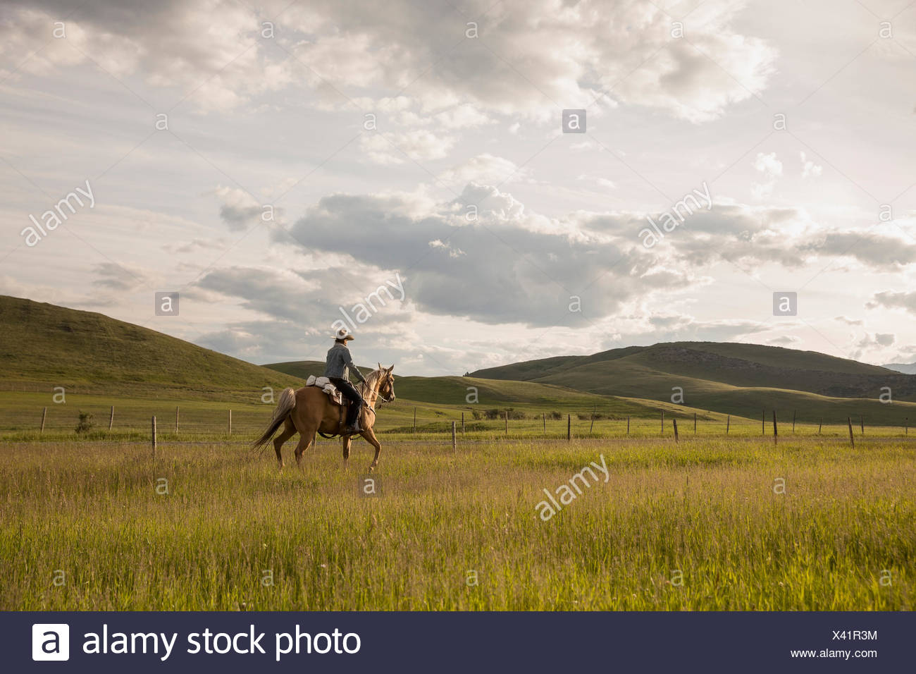 Female rancher galloping horseback in remote sunny field - Stock Image