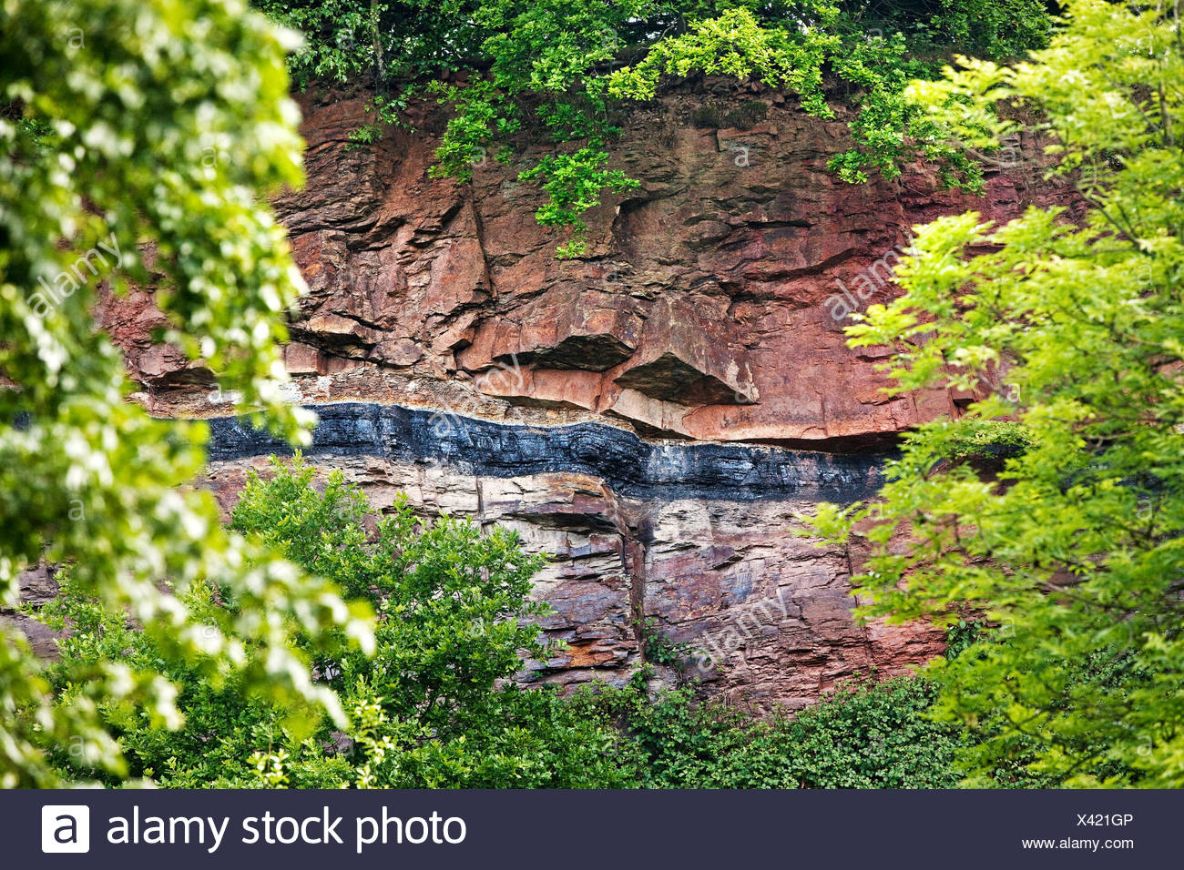 Geological outcrop with overground coal seam, Witten, Ruhr district, North Rhine-Westphalia, Germany - Stock Image