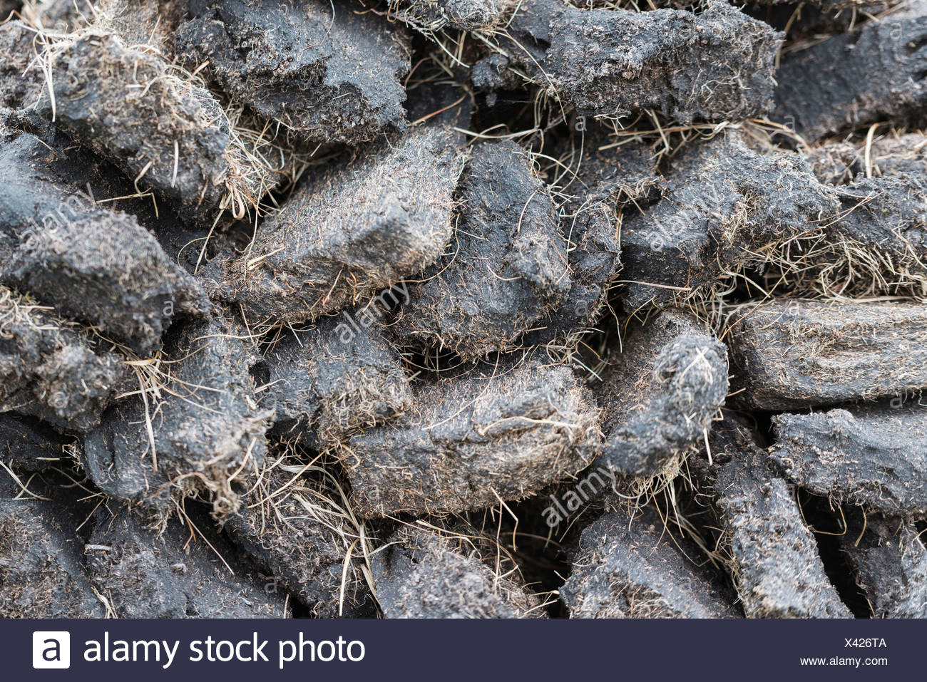 Stack of extracted peat from the Scottish Highland moors, Durness, Schottisches Hochland, Scotland, United Kingdom - Stock Image