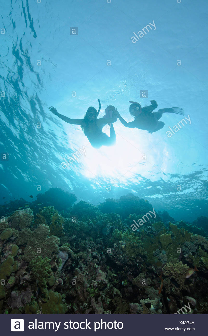 Egypt, Red Sea, Two persons snorkeling - Stock Image