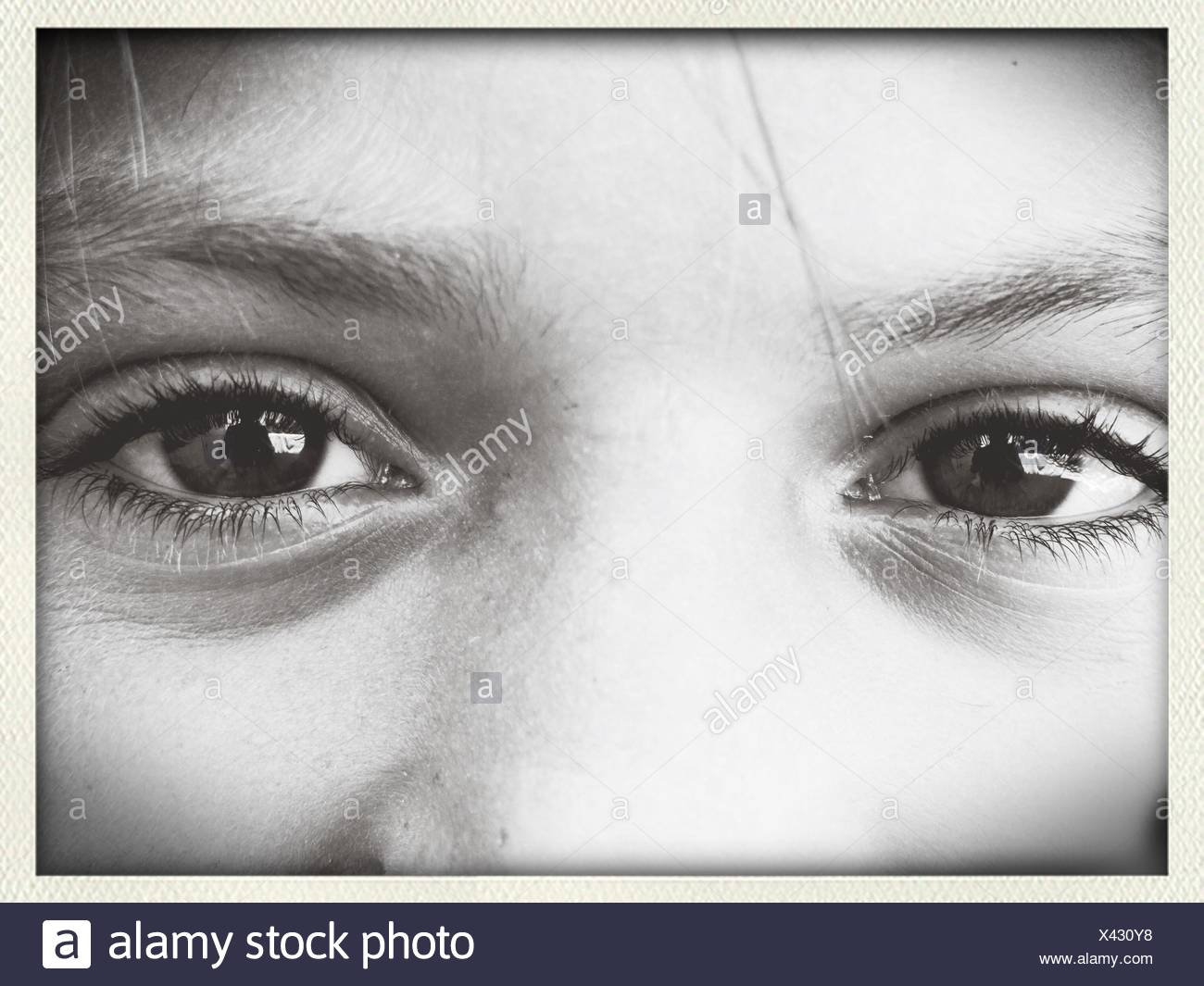 Detail Shot Of Human Eyes And Brows - Stock Image