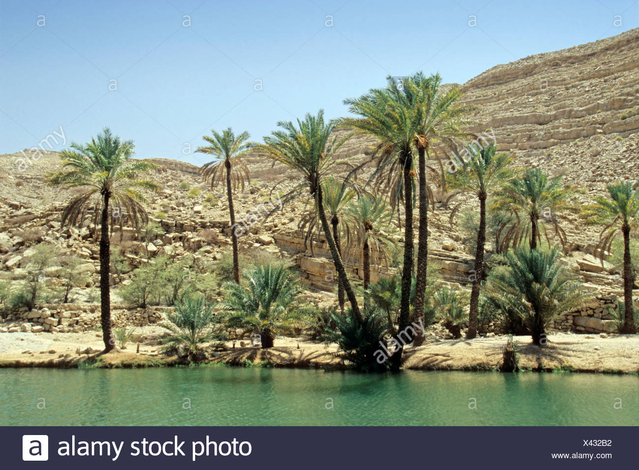 Wadi in a rocky landscape in the Hadjar Mountains, Oman, Arabian Peninsula, Middle East Stock Photo
