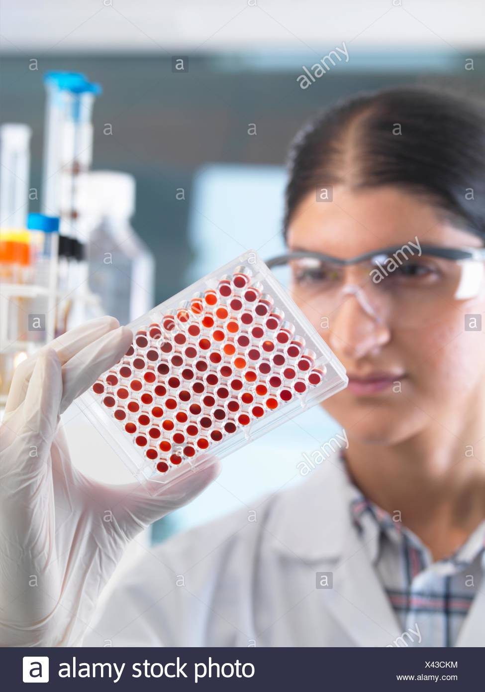 Female scientist examining micro plate blood samples in laboratory - Stock Image