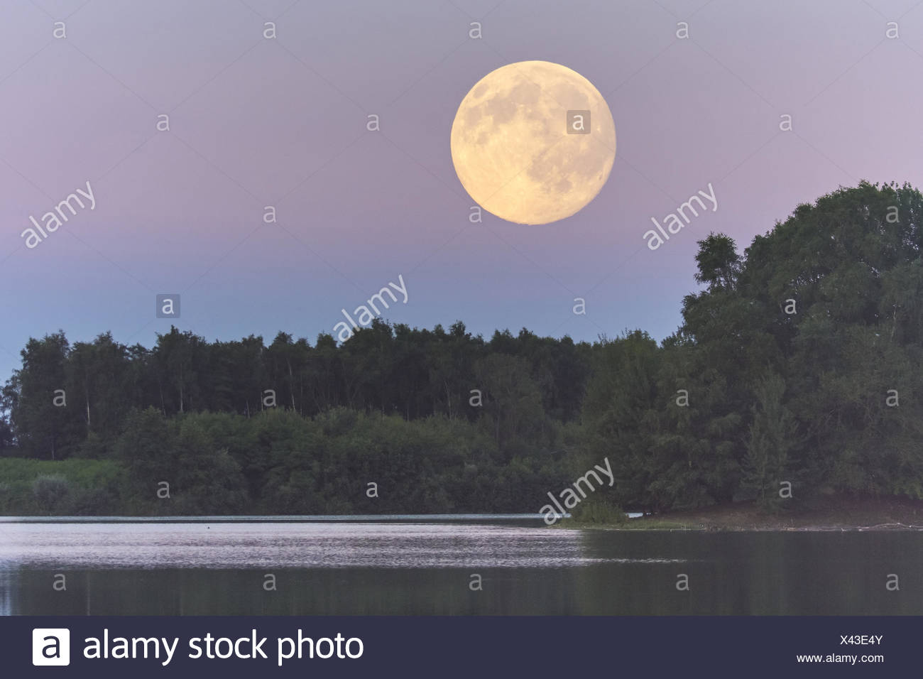 full moon over the dammer bergsee near damme (dümmer), vechta district, lower saxony, germany Stock Photo