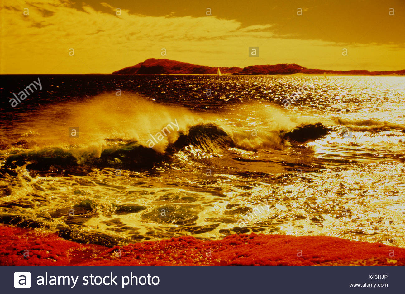 Australia. New South Wales. Sydney.  Surf beach photographed with yellow filter. - Stock Image