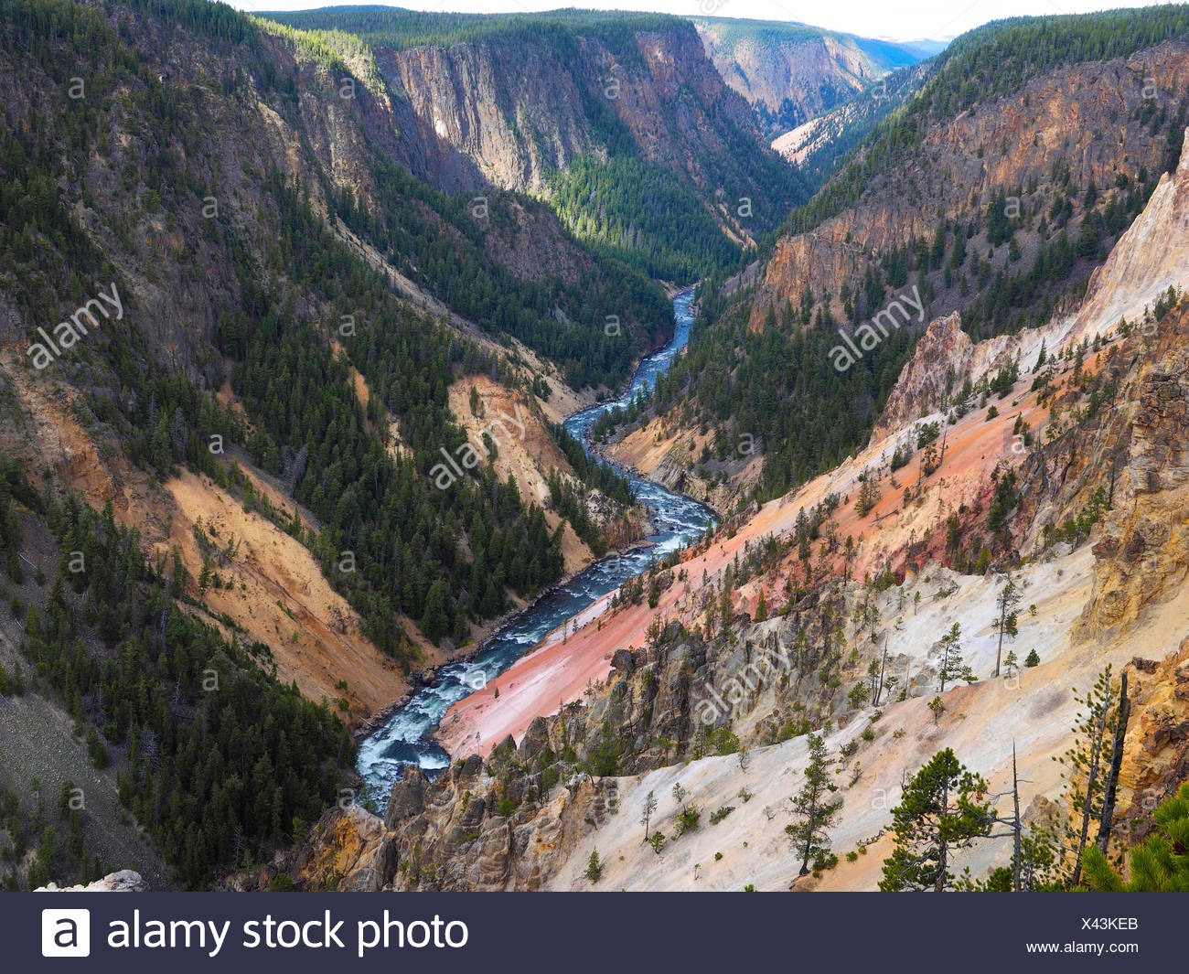 Grand Canon of Yellowstone, USA, Wyoming, Yellowstone National Park - Stock Image