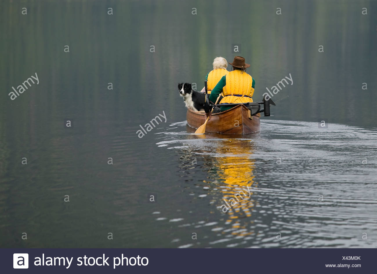 Paddlers in a canoe on Muchalat Lake near Gold River, Vancouver Island, British Columbia, Canada. - Stock Image