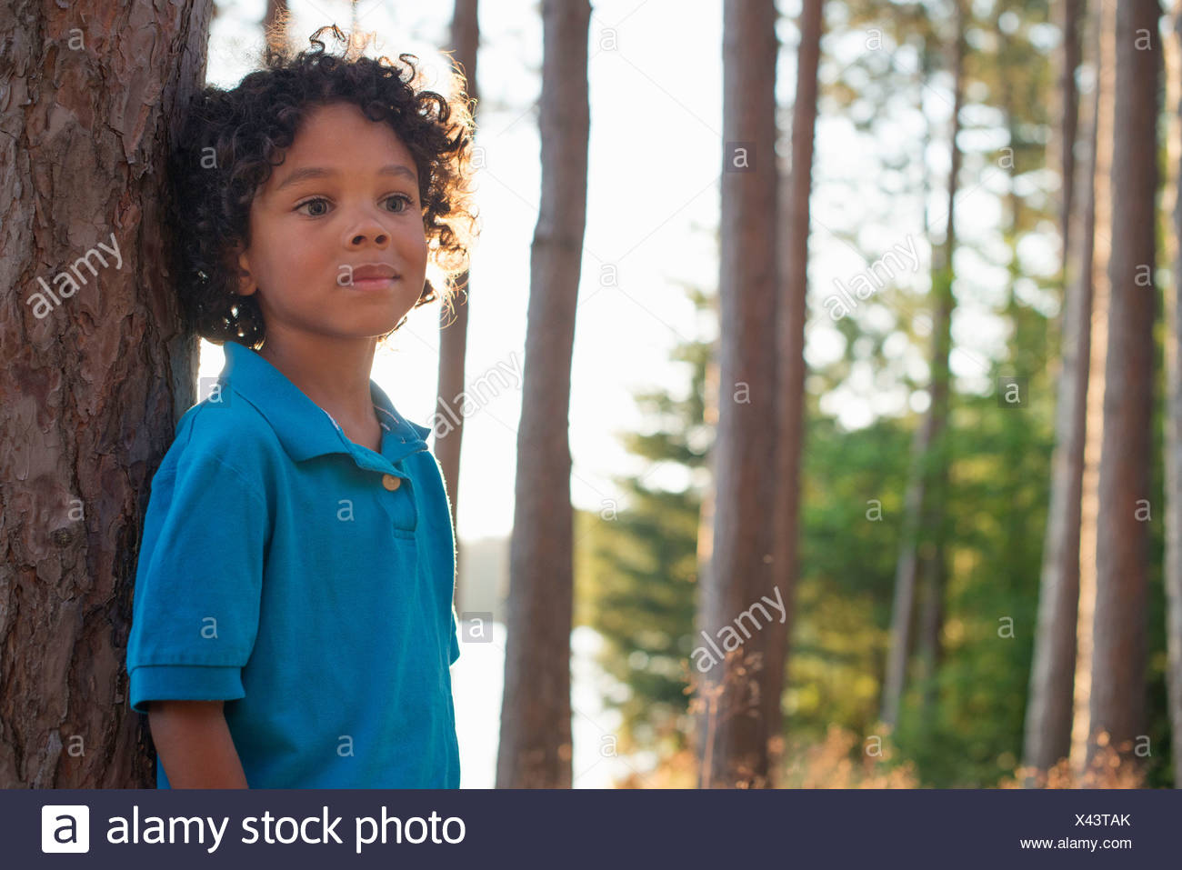 Trees on the shores of a lake. A child standing among the trees. - Stock Image
