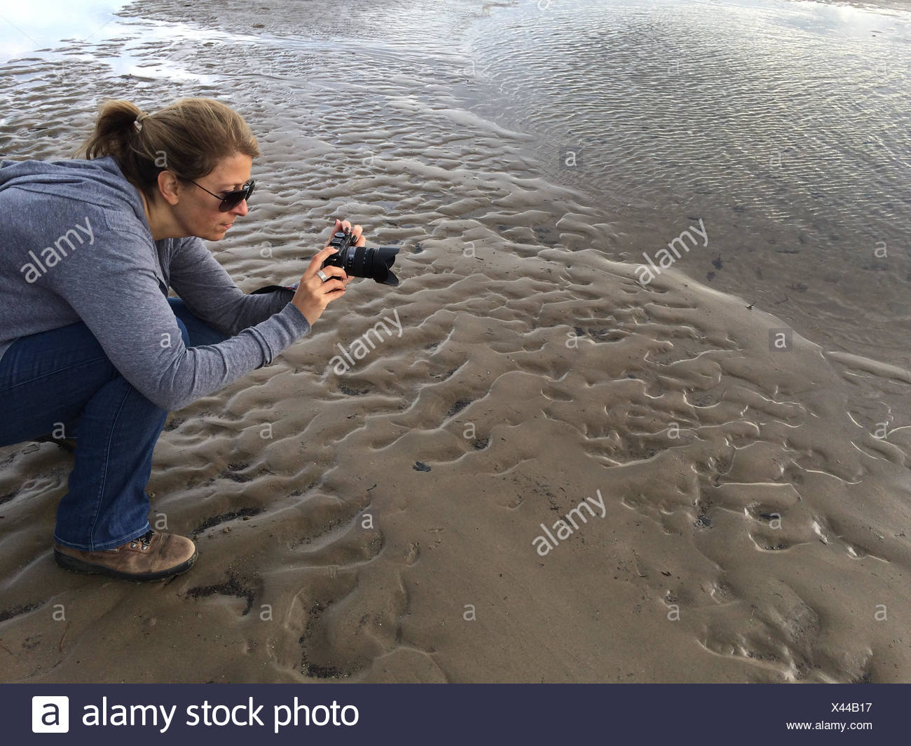 Woman taking a photograph on the beach, Wales, UK - Stock Image