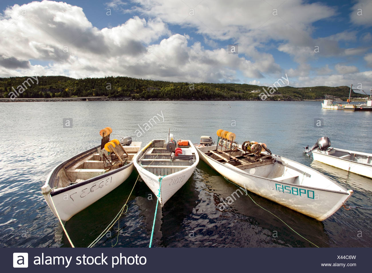 Boats tied up in Plate West Cove, Newfoundland and Labrador, Canada. - Stock Image
