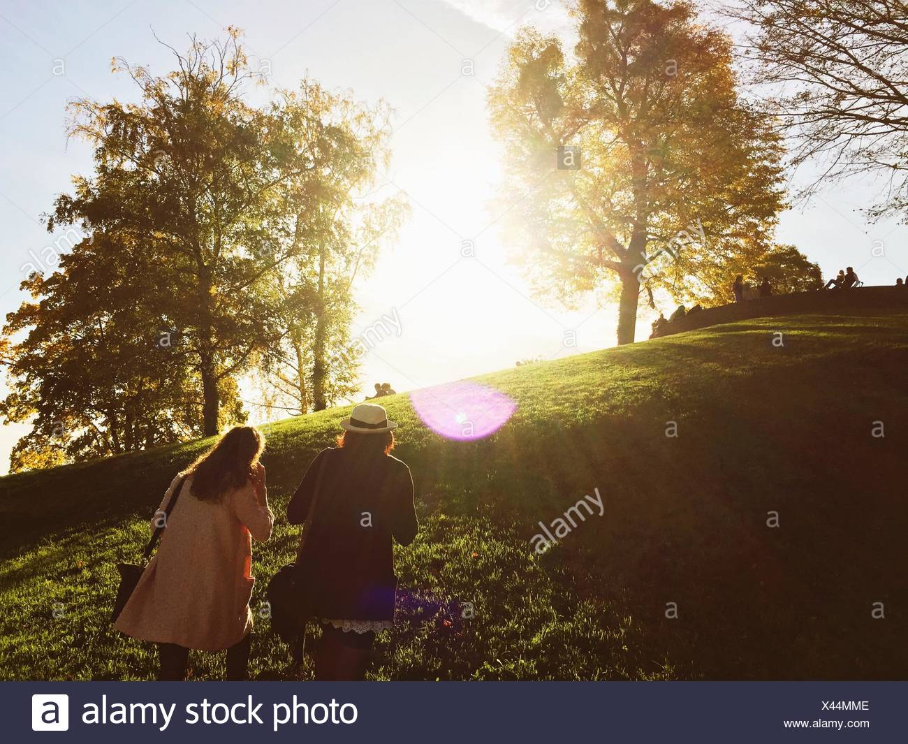 Rear View Of Young Female Friends Climbing Hill In Park - Stock Image