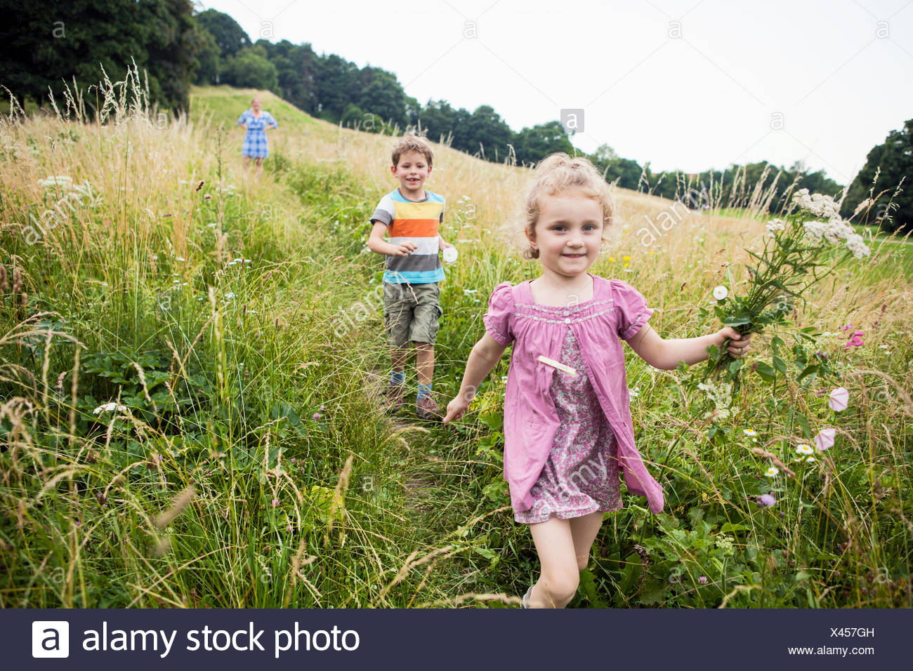 Mother with children picking flowers in the meadow - Stock Image