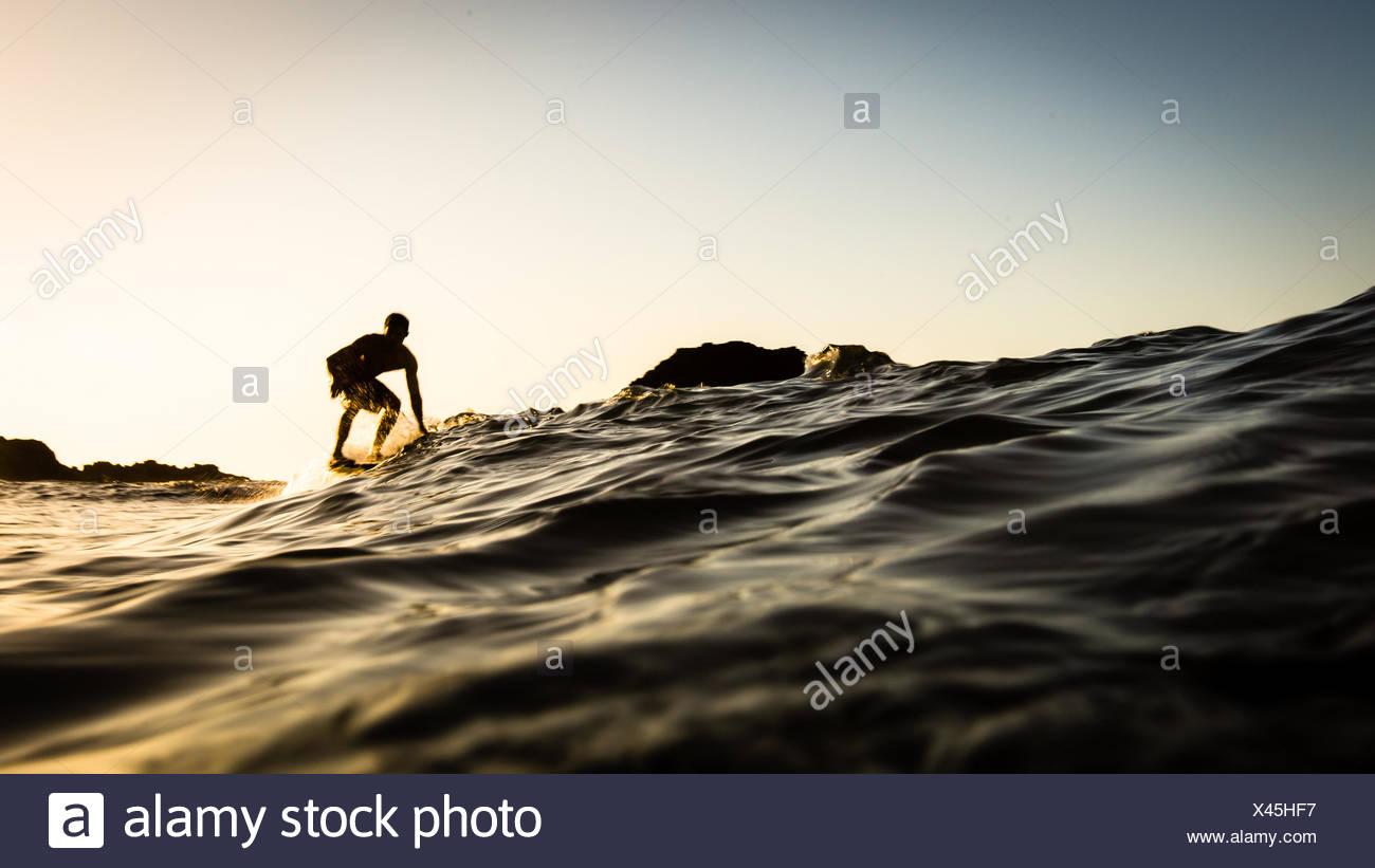 USA, California, Los Angeles County, Malibu, Surfer at sunset - Stock Image