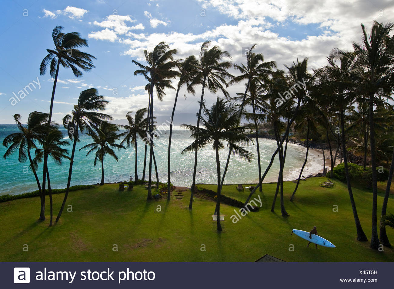 Surfer leaving the beach on the Pacific coast on the island of Maui, Makawao, Hawai'i, USA - Stock Image