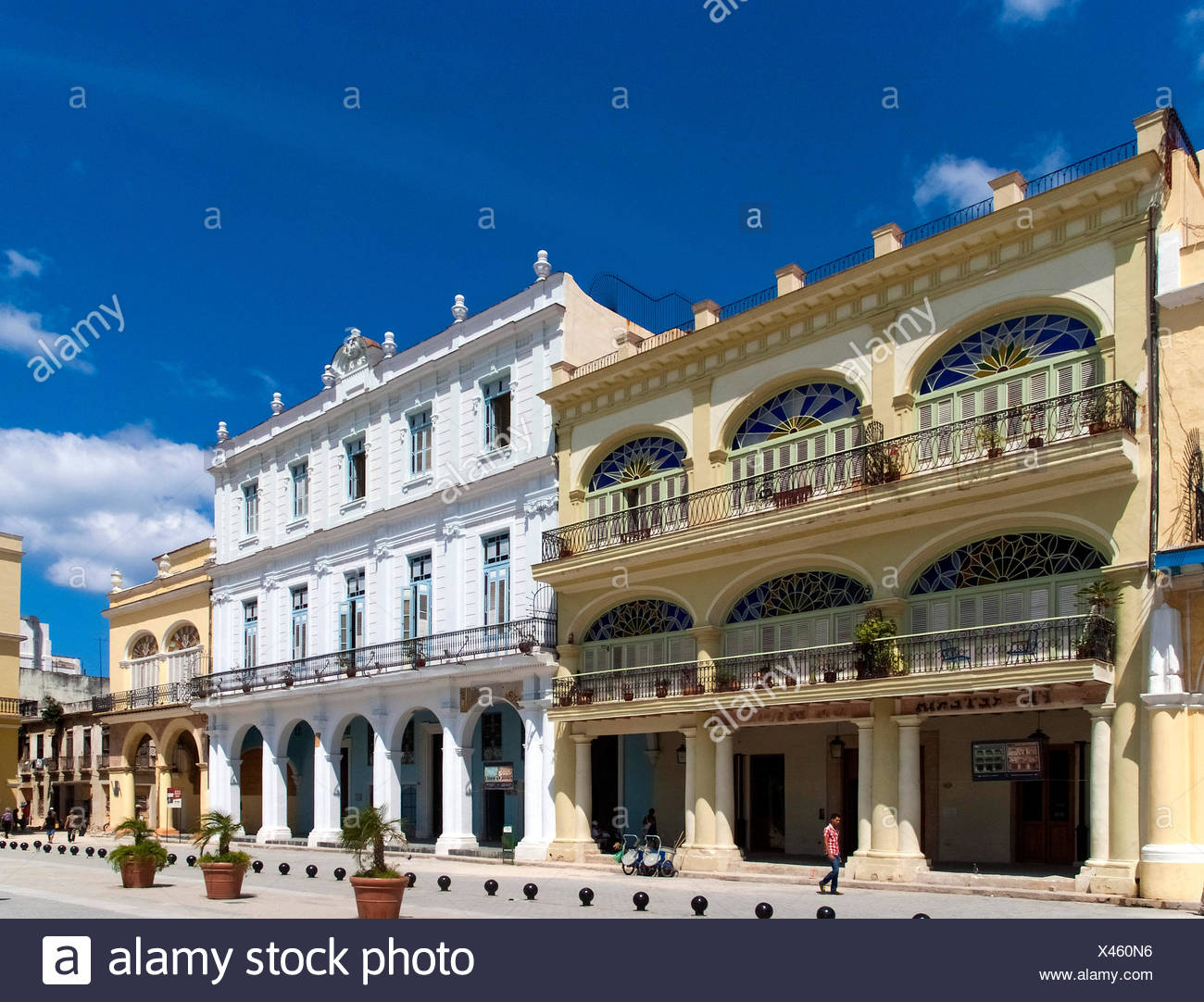 Havanna, Cuba :  La Habana Vieja :  Plaza Vieja Stock Photo
