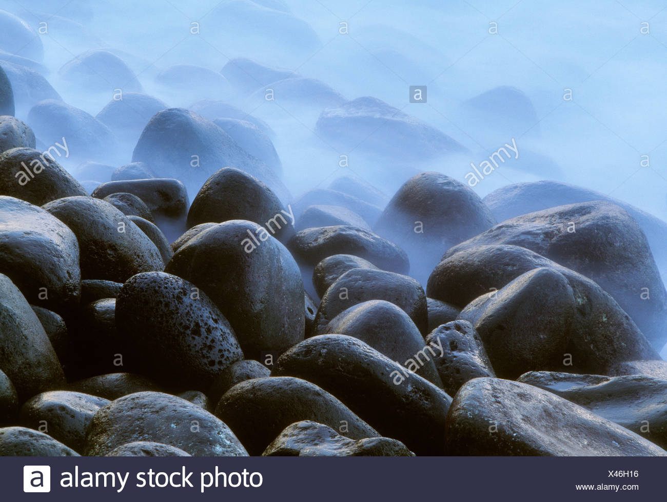 Volcanic rock, Puna coast, Hawaii - Stock Image