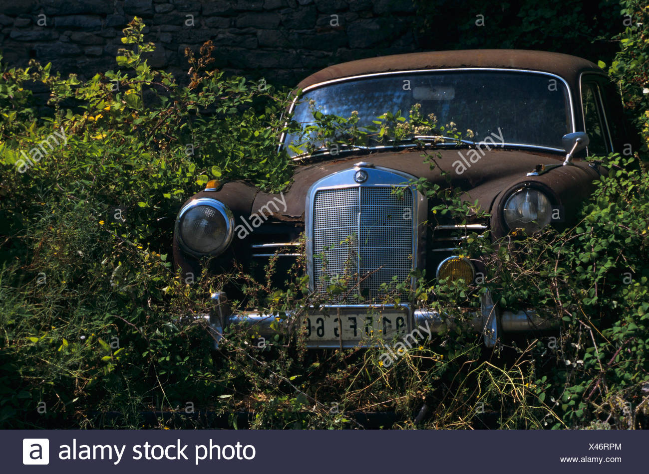 Clapped Out Stock Photos Images Alamy Antique Car Fuse Box Old Amongst Bushes Image