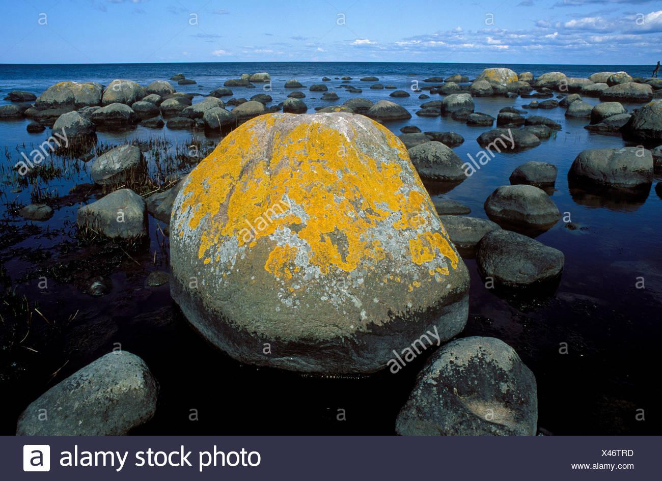 Stenshuvud National Park, Baltic Sea, Skane, Sweden - Stock Image