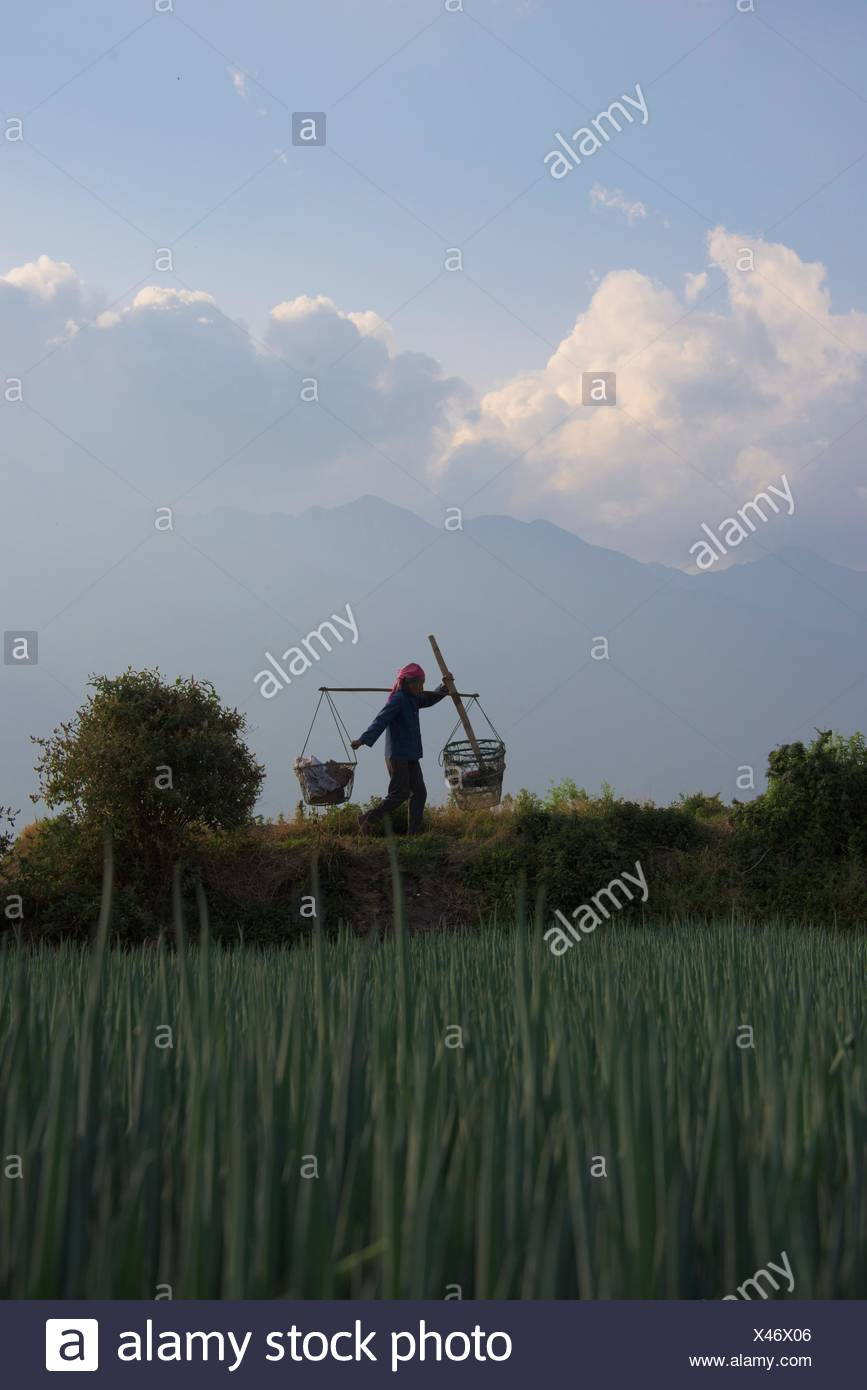 China, Yunnan, woman with yoke - Stock Image