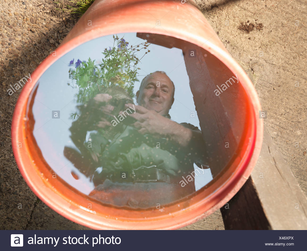 Reflection Of Gardener In Water - Stock Image