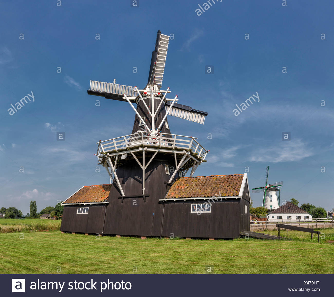 Netherlands, Europe, Holland, Ten Boer, Groningen, windmill, summer, Bovenrijge, Widde Meuln - Stock Image